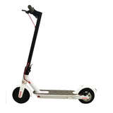 Electric Scooter Portable Foldable Commuter Bike 250W Brushless Motor White